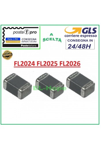 IC CHIP FL2024 FL2025...